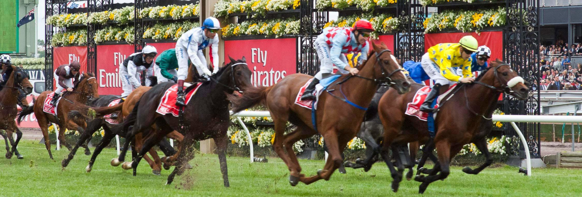 Melbourne Cup Day Return Ferry Transfer Package